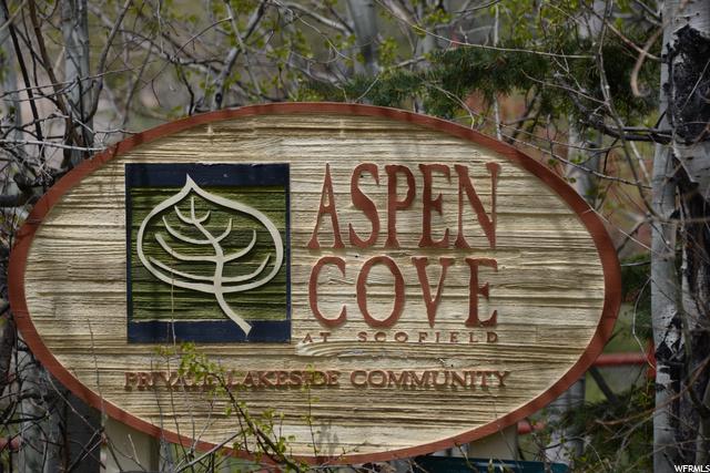 133 DR Aspen Cove Dr