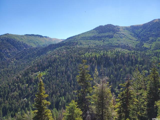 23 Pine Ridge