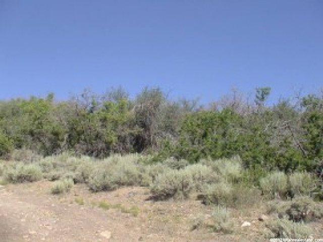70 WATER HOLW Fountain Green, UT 84632 - MLS #: 705349
