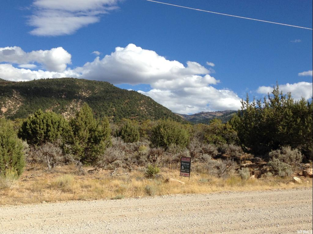 Pristine land in beautiful Canal Canyon, 3 miles SE of Historic Spring City, One acre foot water right included in purchase, for drilling your well. Enjoy the seclusion and ride your horses right from your property to Horseshoe Mt. Trail, only 1/2 mile away. Year round access on a county maintained road. Call agent for more information.