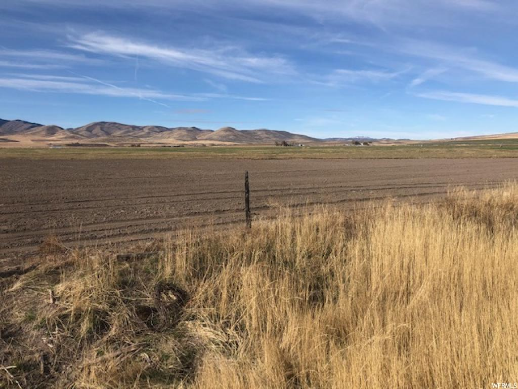 140 Acres total.  110 acres irrigated with pivot with water shares.  Great location in Malad Valley with beautiful views from the property.  Pressurized gravity fed line.  Grow hay, grain, etc.  Lots of options with this property.