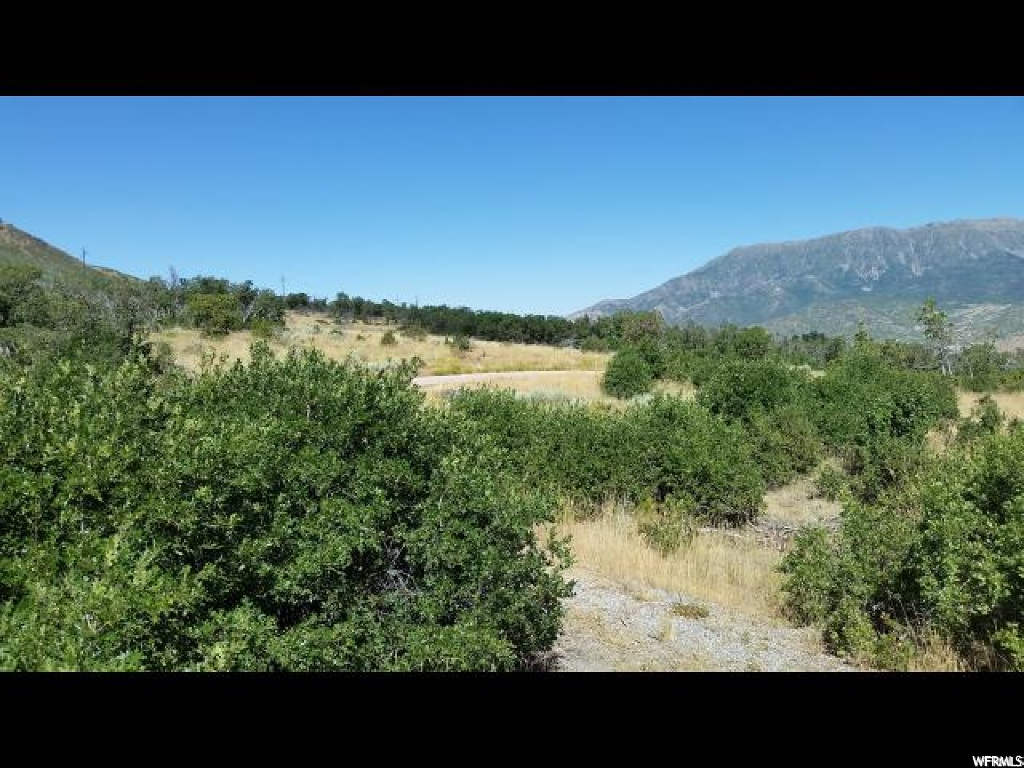 LOOKING FOR A PERFECT GETAWAY?   10 ACRE LOT APPROXIMATELY 7 MILES EAST OF NEPHI IN HOLIDAY OAKS ESTATES.  BEAUTIFUL VIEWS, PEACE, TRANQUILITY AND CLEAN FRESH MOUNTAIN AIR!  THE MAIN GATE IS LOCKED AND MUST BE SHOWN BY APPOINTMENT ONLY.   EASY ACCESS.