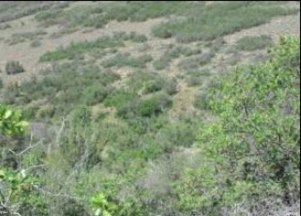 Great lot.  Divided into 2.5 a 1.25 acres.  Great views of deer and elk grazing valley.  Dry Subdivision so you do not have to have water rights or well to build.  Must check with county before building because it is a part of the original 5 acre lot.  Pad for parking trailer or motor home in place.  No HOA fees.  NO home owner association to deal with.  Lots of room to roam and have fun.