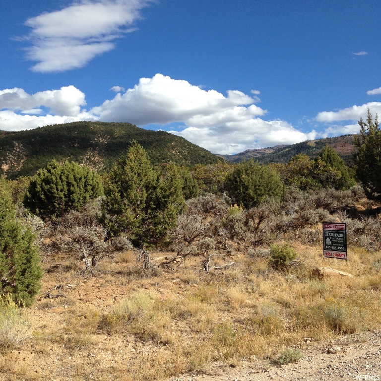 Pristine land in beautiful Canal Canyon, 3 miles SE of Historic Spring City, one acre foot water right included, for drilling your well. Enjoy the seclusion and ride your horses right from your property to the Horseshoe Mt Trail, only 1/2 mile away. Year round access on a county maintained road. Call agent for more info.