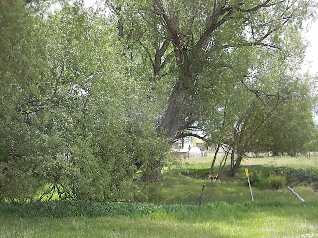 (A2210CS) Prettiest lot you'll ever find! No exaggeration, this lot is beautiful! Right in the heart of Fountain Green. Huge willow trees with a small stream running through the lot. Sewer and water are stubbed. Only 1 house can be built on this lot. Nice pasture and so much charm and beauty here. Fountain Green is just 15 minutes to the freeway. Come and enjoy the peace of country living. 1 share of Fountain Green Irrigation water is available for purchase outside of listing contract.