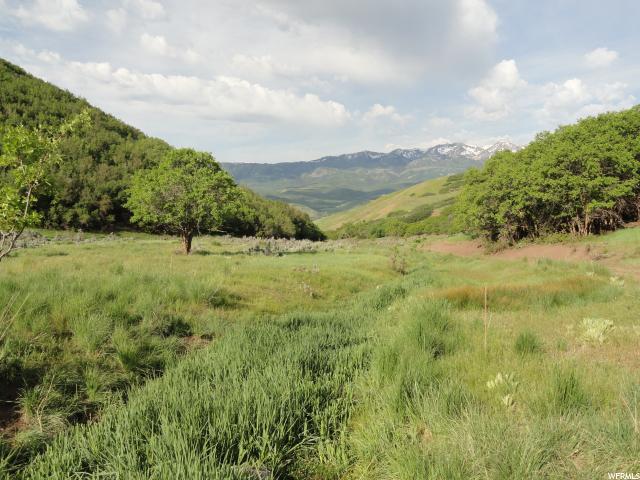 Morgan, Morgan, Utah, United States 84050, ,1067423