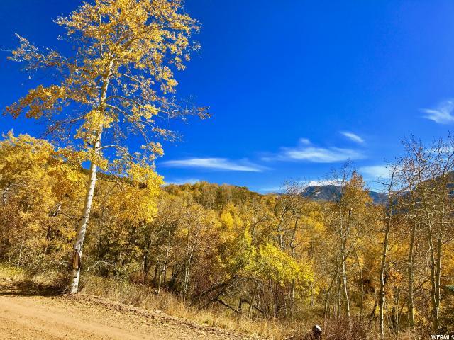 13 Carson, Oakley, Utah 84055, ,Land,For sale,Carson,1314797
