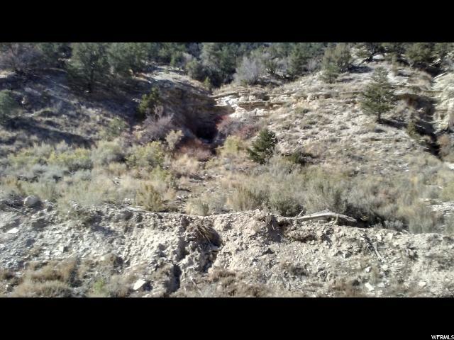 Duchesne, Utah 84021, ,Land,For sale,1368079