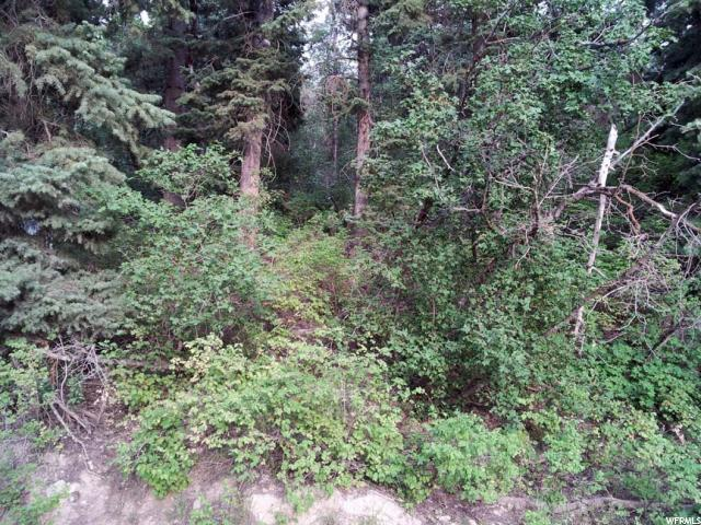 Your Dream Utah Property 11 500 1251 E North Fork Rd