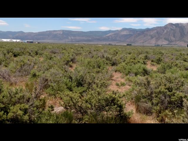 18.50 AC. INDUSTRIAL LOT WITH POWER AND TELEPHONE TO THE PROPERTY.  Several adjacent lots/land available  from 5 to 60+ AC. 1320 ft of highway frontage