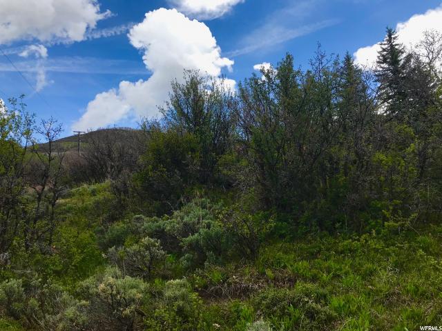 10250 Seneca Road, Oakley, Utah 84055, ,Land,For sale,Seneca Road,1526506