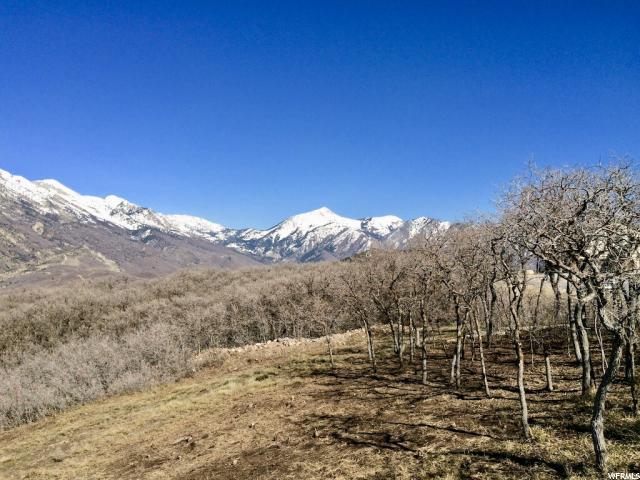 2025 Lone Spruce, Draper, Utah 84020, ,Land,For sale,Lone Spruce,1539489