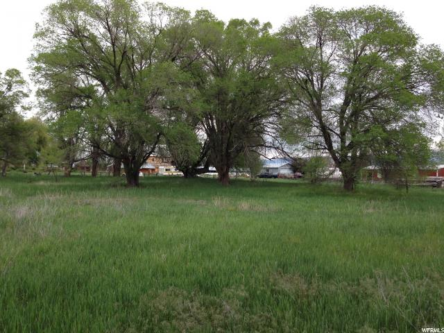 Beautiful building lot in the middle of Sanpete County, convenient location,  just waiting for you and your builder. Beautiful mature trees, convenient road access in an established residential area. Great working water well has been tested for function, has a good flow rate and maintained suction throughout an 8 hour test, (video of well testing available upon request). Buyer will need to buy a water right from Area 65 to attach to the well. Buyer will receive documents from a chain of title search from the beginning and a book on the history of Chester from 1870-1964. Travel times: 30 minutes to Nephi & I-15, 60 min to Provo, 1 hour & 45 min to SL International airport, close to National Forest & recreational areas.