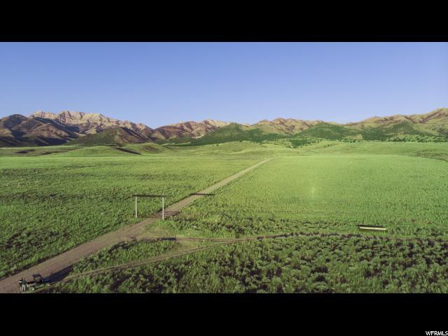 Grantsville, Utah 84029, ,Farm,For sale,1556293