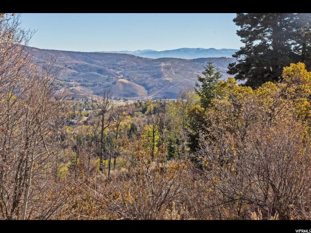 8965 Parleys, Park City, Utah 84098, ,Land,For sale,Parleys,1562733