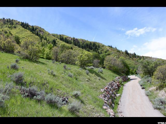 3802 Catamount Ridge, Sandy, Utah 84092, ,Land,For sale,Catamount Ridge,1593262
