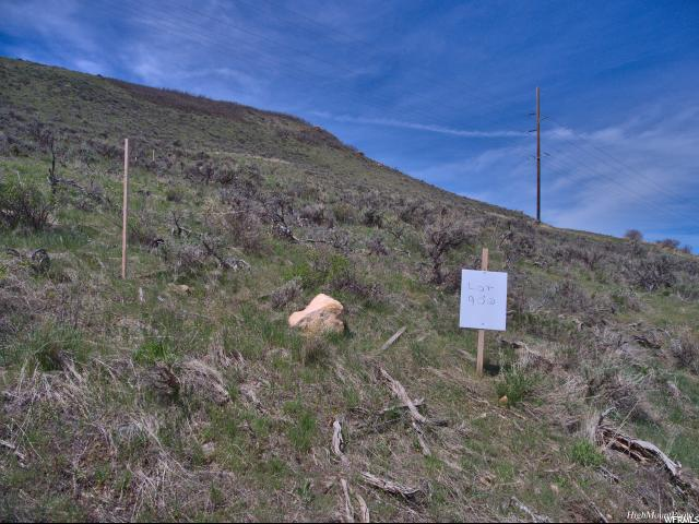 900 West Hoytsville, Hoytsville, Utah 84017, ,Land,For sale,West Hoytsville,1599034