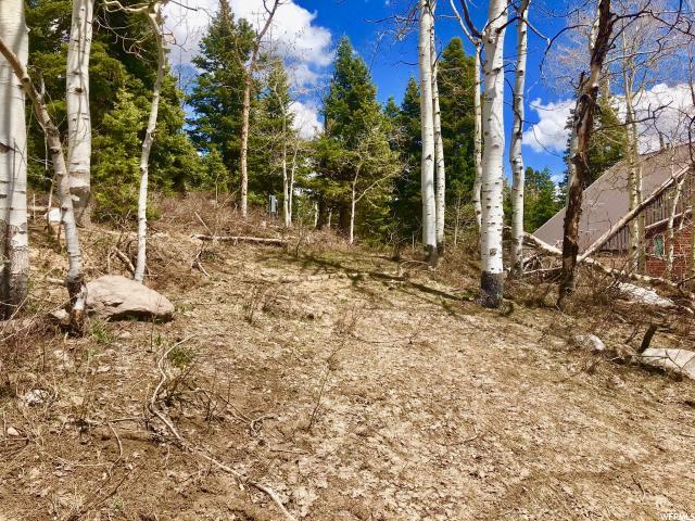 1065 Beaver, Wanship, Utah 84017, ,Land,For sale,Beaver,1599164