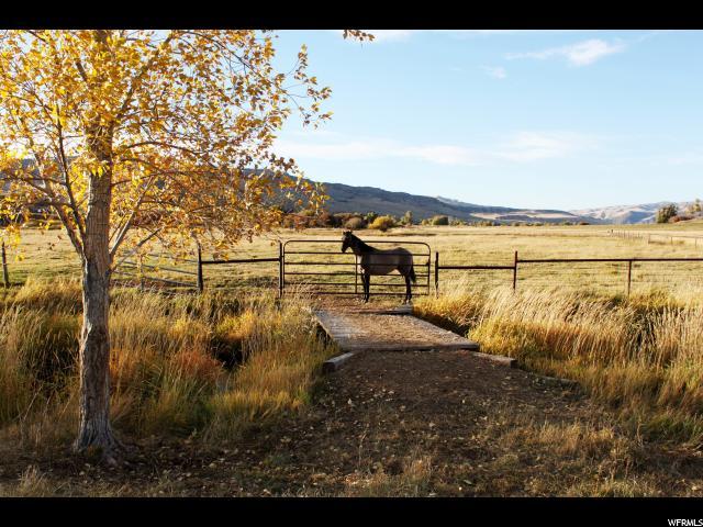 1085 Hoytsville, Hoytsville, Utah 84017, ,Land,For sale,Hoytsville,1600686