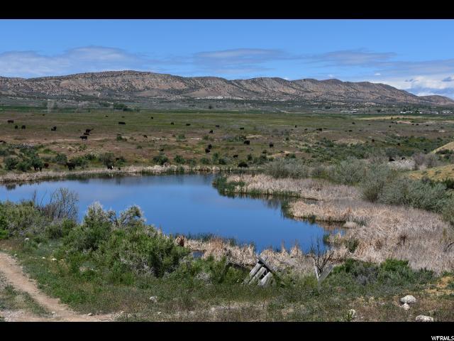 3876 E GOOSE RANCH, Vernal, Utah 84078, ,Farm,For sale,GOOSE RANCH,1601533