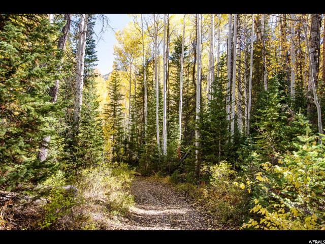 8860 E WEBER CANYON, Oakley, Utah 84055, ,Land,For sale,WEBER CANYON,1638438