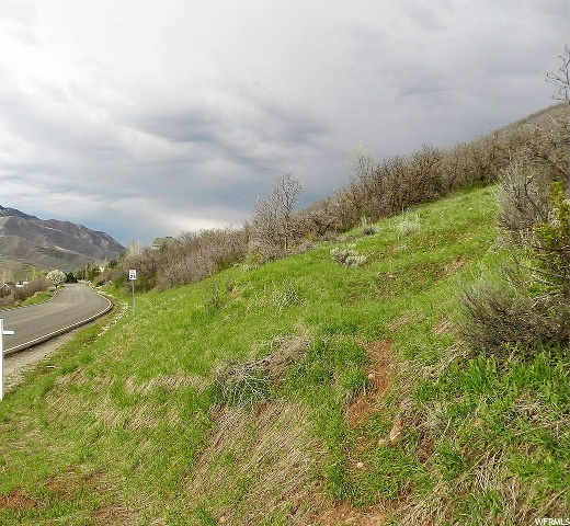 5729 Pioneer Fork, Salt Lake City, Utah 84108, ,Land,For sale,Pioneer Fork,1658887