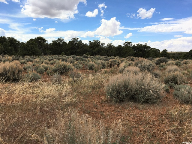 318 OLD SUMMIT RD, Monticello, Utah 84535, ,Land,For Sale,OLD SUMMIT,1677981