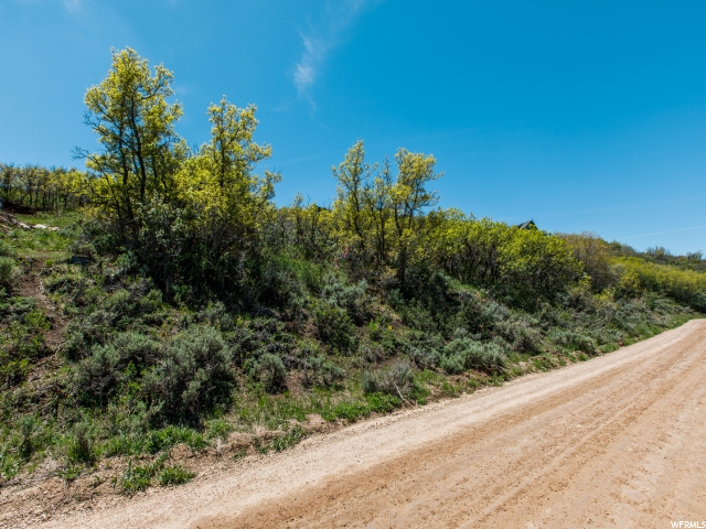 93 Aspen, Wanship, Utah 84017, ,Land,For sale,Aspen,1702924