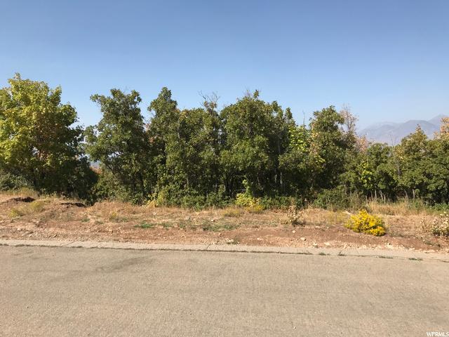 50 Cougar Lane, Woodland Hills, Utah 84653, ,Land,For sale,Cougar Lane,1702980