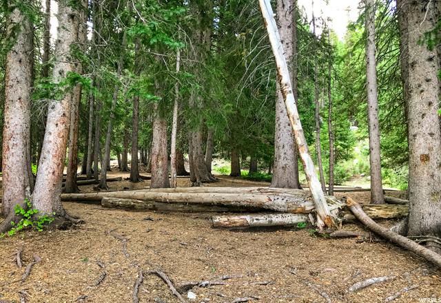 12391 Willow Loop, Brighton, Utah 84121, ,Land,For sale,Willow Loop,1703133