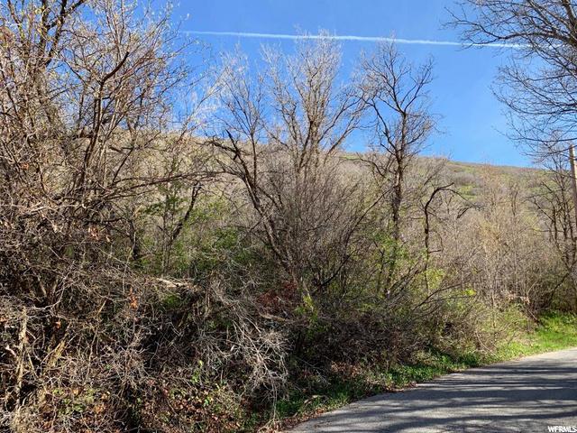 6585 Quarter Mile, Emigration Canyon, Utah 84108, ,Land,For sale,Quarter Mile,1703333