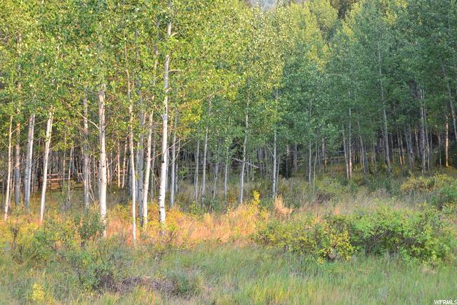 Oakley, Utah 84055, ,Land,For sale,1703338