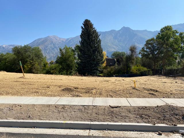 354 Whitby Woodlands, Alpine, Utah 84004, ,Land,For sale,Whitby Woodlands,1703393