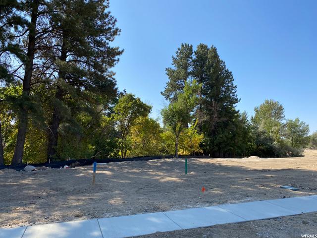 372 Whitby Woodlands, Alpine, Utah 84004, ,Land,For sale,Whitby Woodlands,1703397