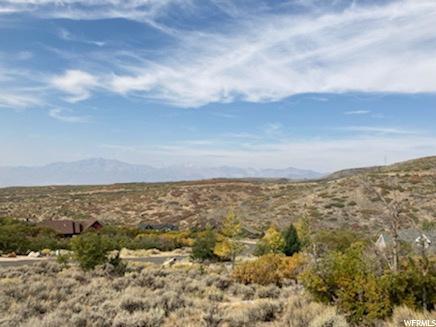 250 POLE, Heber City, Utah 84032, ,Land,For sale,POLE,1713836