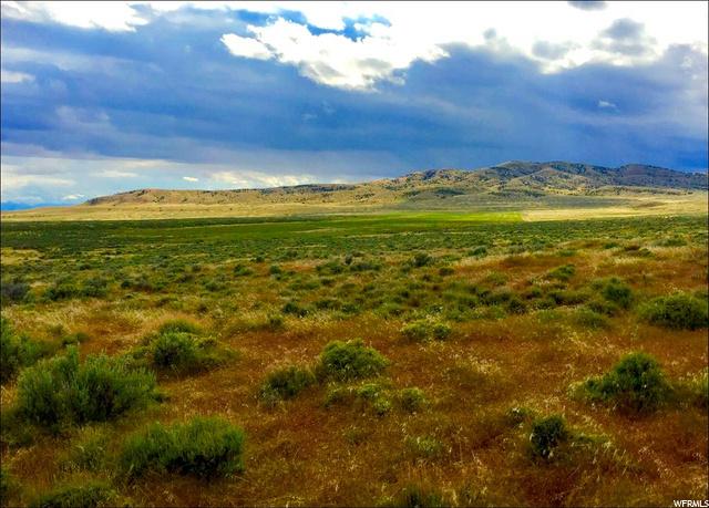 Park Valley, Utah 84329, ,Land,For sale,1721426