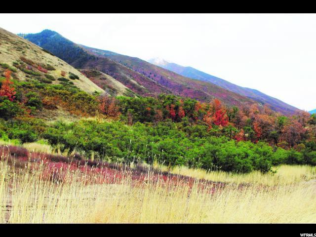 Mapleton, Utah 84664, ,Land,For Sale,1723008
