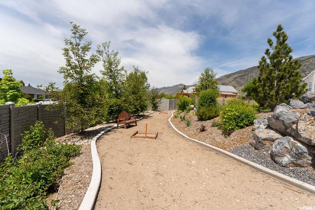 Backyard horseshoes/future putting green area and blackberry bushes