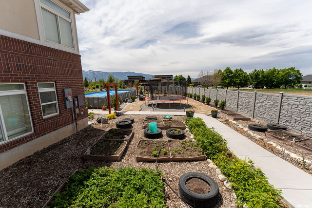 Backyard Garden - sprinkler system