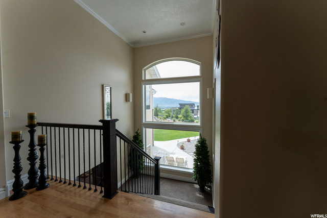 Stairs to basement from main floor - Picture windows
