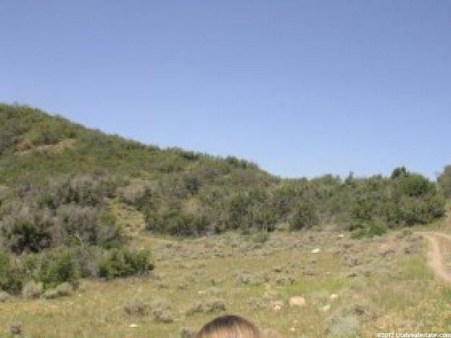 Great cabin site, trees & views. Great ATV area. Get your family away at an affordable price. Terms available- $1,000 down balance at 10% for 10 years. This is the north 1/2 of Lot 37.  Located to the west of Mt. Baldy Loop. Owner/agent