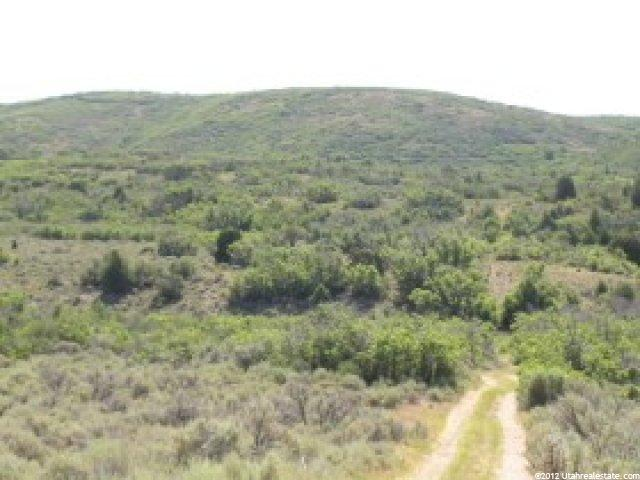 Stream (part of the year) trees, great views, and an ideal building site. Build a cabin or park your trailer. ATV, hiking, & biking. Terms available- $2,000 down, balance at 10% for 10 years. Owner/agent.